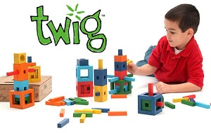 Twig Blocks 72 pieces