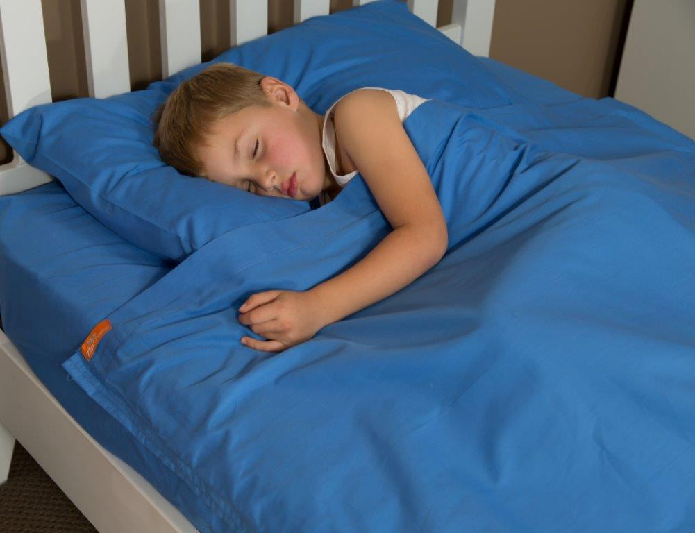 Kidz Zip Sheets - Blue Flannel